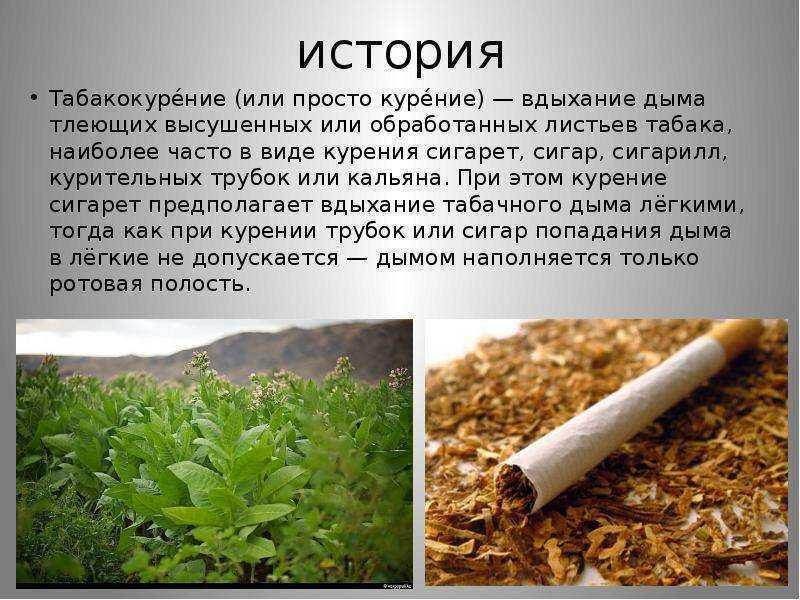 Табачные стики фиат американские сигареты купить в москве самовывоз