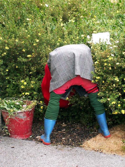 Из чего сделать пугало своими руками на огород