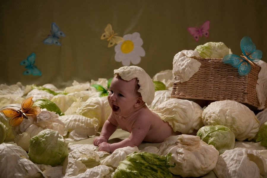 Днем, открытка малыш в капусте