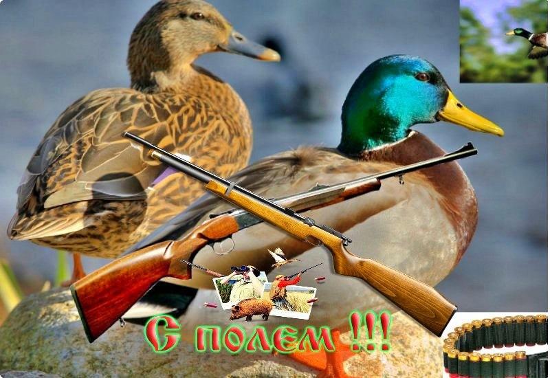 Надписью лучший, открытие охоты открытки
